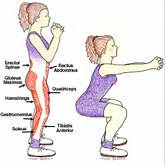 How to Do Squats with Proper Squat Technique from CommonSenseHealth ...
