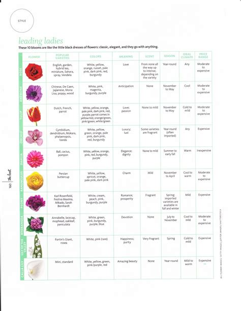 Types Of Flowers And Their Meanings by Flowers And Their Meanings Leigh Florist