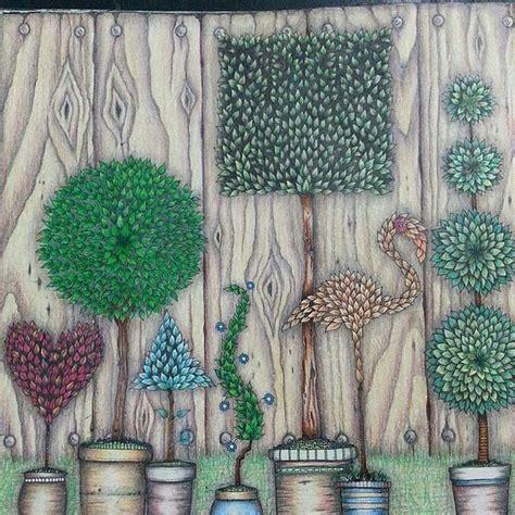 secret garden coloring book dymocks wendys secret garden lavender bay sydney secret garden
