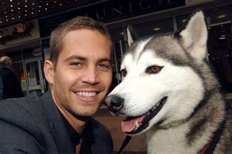 eight below names 1000 images about eight below my favorite on big thing the