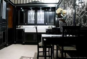 Kitchen Ideas With Black Cabinets by Black Kitchen Cabinets With Different Ideas Kitchen