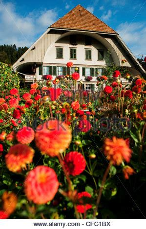 farm farmhouse farm house farm stead emmental