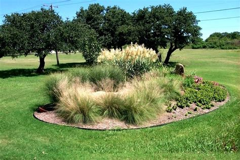 landscaping with ornamental grasses landscaping with