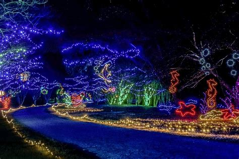 norfolk botanical garden lights display among best in