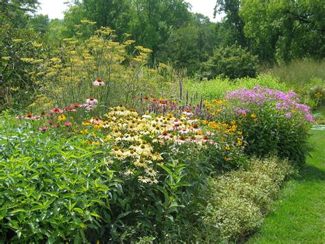 butterfly garden pictures 28 images naba north jersey butterfly club gardening how to