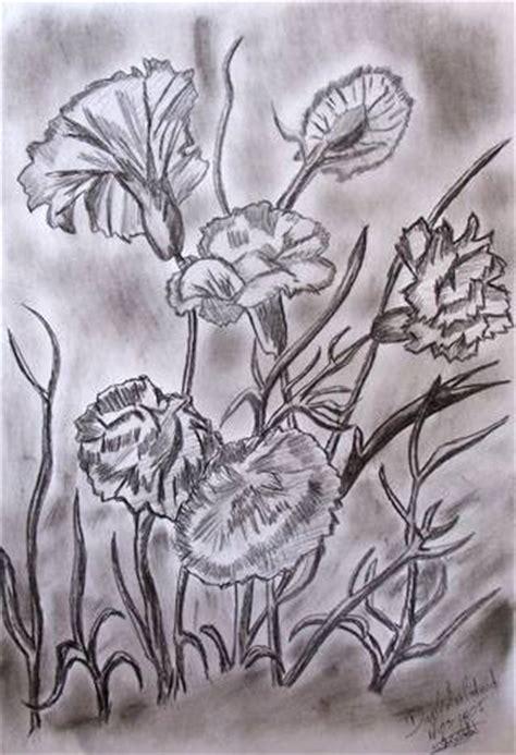 imagenes de rosas hechas a lapiz flores die g c artelista com