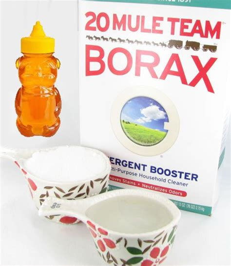 17 best ideas about borax ants on killing