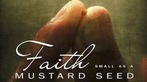 small as a mustard seed books faith small as a mustard seed inspiration and