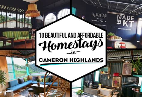 Travel Bunk Beds 10 Beautiful And Affordable Homestays In Cameron Highlands