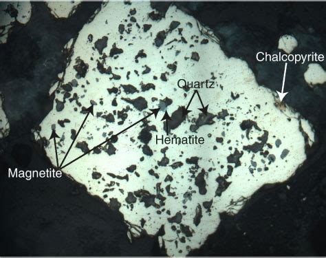 chalcopyrite thin section figure f80 pyrite with abundant magnetite and quartz and