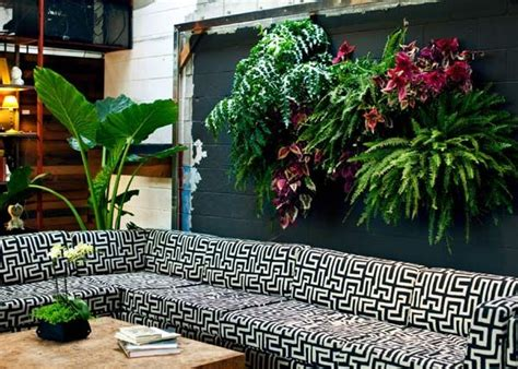innovative indoor vertical wall garden concept homelilys 55 best images about tiles and wall pockets design idea on