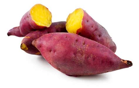 kamote man mashed kamote sweet potato biscuits global granary