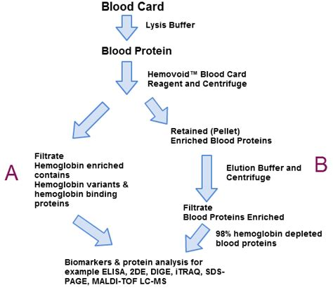 protein in blood hemovoid blood card reagent biotech support llc
