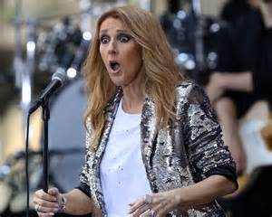 Celine Dion Totally Photobombed A Couple S Proposal