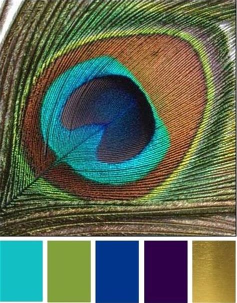 peacock colors peacock wedding ideas and inspirations budget brides