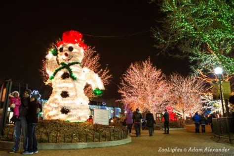 lincoln park zoo lights 2017 lights in chicago tours choose chicago