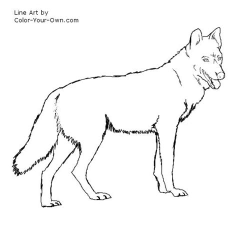 wolf puppies coloring pages free coloring pages of wolf puppies