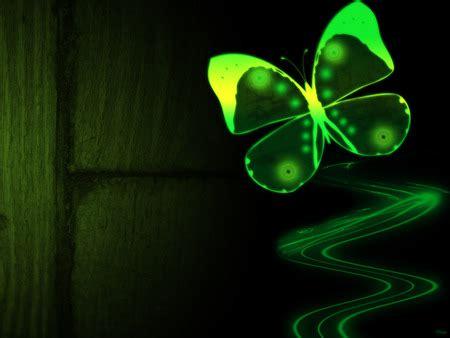 green butterfly desktop wallpaper green butterfly 3d and cg abstract background