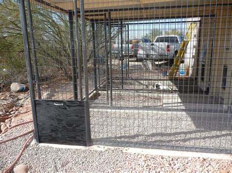 kennels tucson cat kennel tucson why does cat hospital a loyalty program of tucson cat