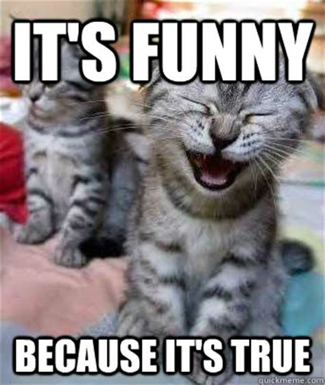 Funny True Meme - image gallery it s funny because meme