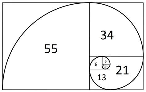 section 211 of companies act code golf fibonacci spiral programming puzzles code