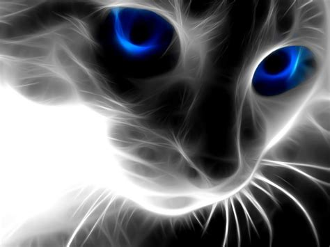 cat wallpaper for walls animal pictures wallpapers for wall all images