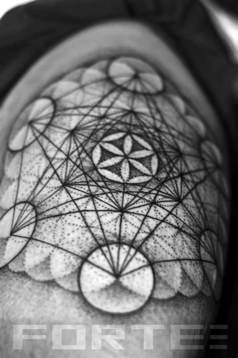 flower of life tattoo meaning 77 best dillon forte sacred geometry portfolio
