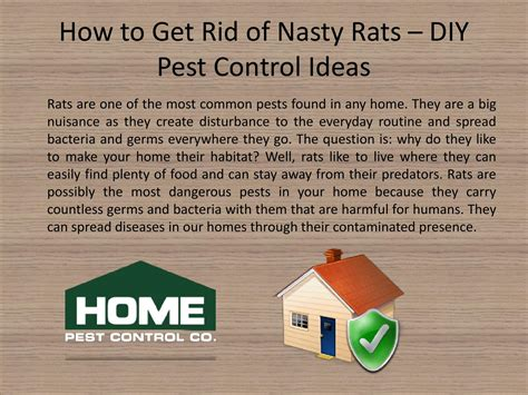 how to get rid of rats by home pest issuu