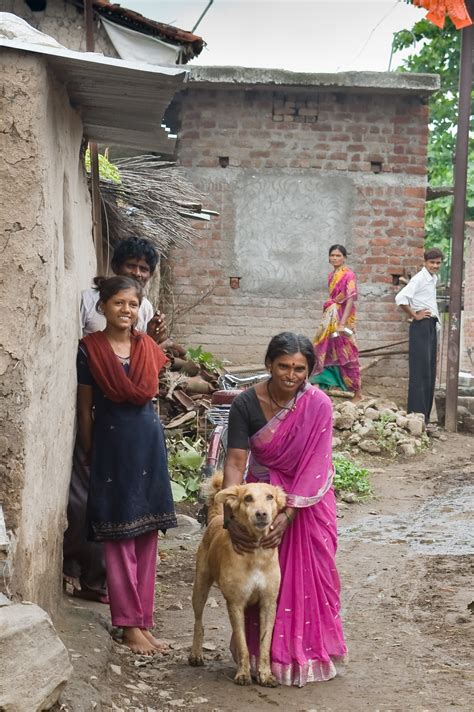 dogs india s
