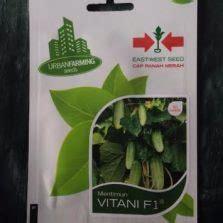 Benih Timun F1 Kemasan Known You Seed benih selada romaine 5 gram known you seed