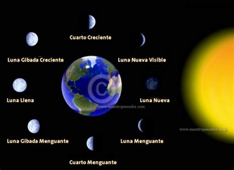 fases de la luna 2015 portada fases luna nueva 2015 new calendar template site