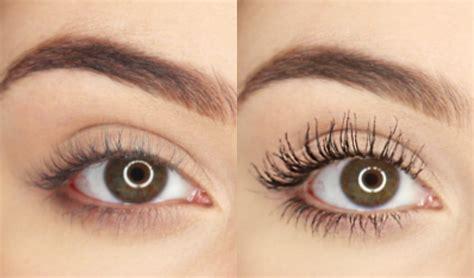 imagenes de ojos naturales como tener las pesta 241 as largas y gruesas maqui015