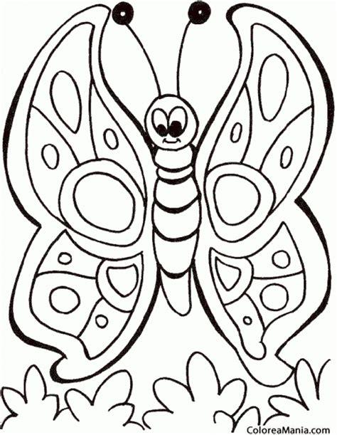 mariposas para colorear dibujos de mariposas colorear mariposa dibujo infantil insectos dibujo para