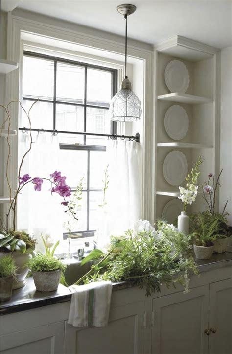 Kitchen Window Plants Great Kitchen Window Sunlight For Growing Plants Flowers