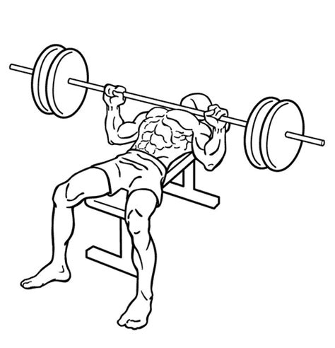 bench press movement bench press chest exercises exercise guides