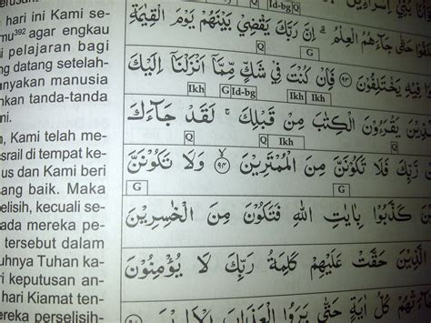 Al Majid Al Quran Terjemah Dan Tajwid Warna Promo al quran tajwid murah pilihan untuk wakaf alida solusi