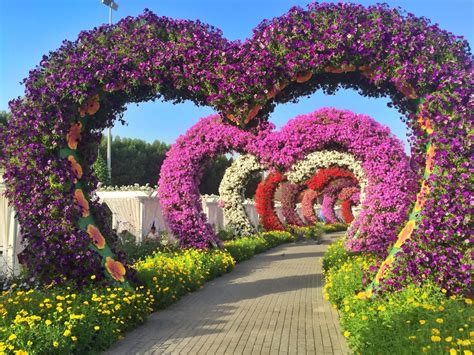 garden of eden dispensary