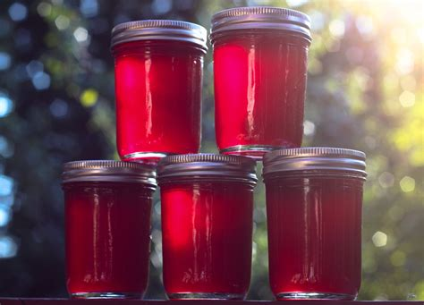 Plumb Jelly by Sweet Plum Jelly The Moonlit Kitchen