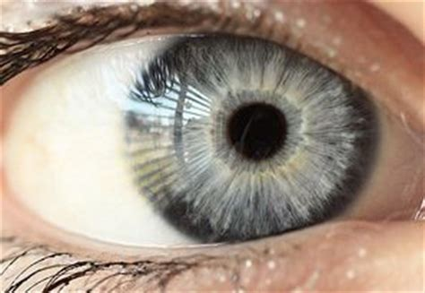 how many eye colors are there silver eye color is also quite although many