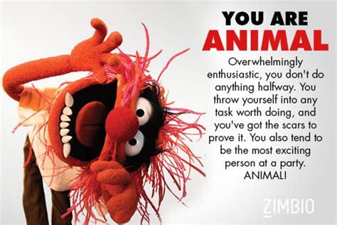 what animal are you animal which muppet are you zimbio