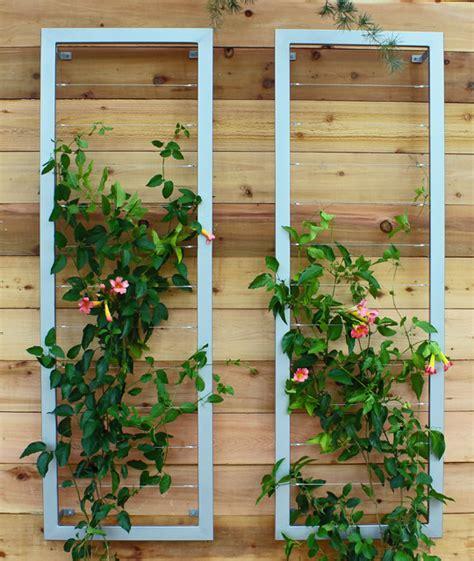 Vertical Trellis Vertical Garden With Ina Wall Trellis By Terra Trellis