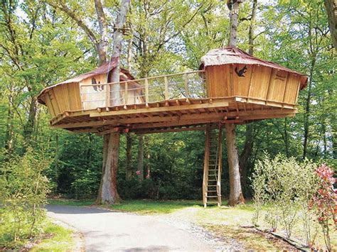 Unique Tree Houses Plans And Designs New Home Plans Design
