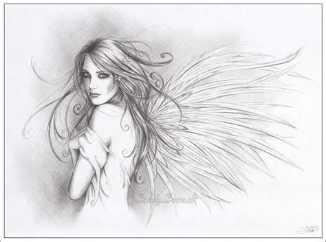 winged things a grayscale coloring book for adults featuring fairies dragons and pegasus books your by zindy on deviantart