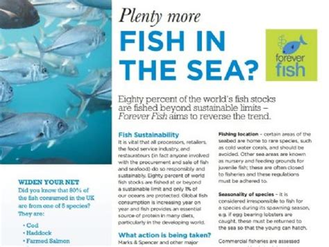 plenty of fish forever it will be m s a plan a m s forever fish study pdf
