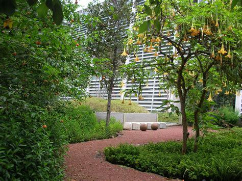 designboom jardin biblioteca vasconcelos by tax arquitectura alberto kalach