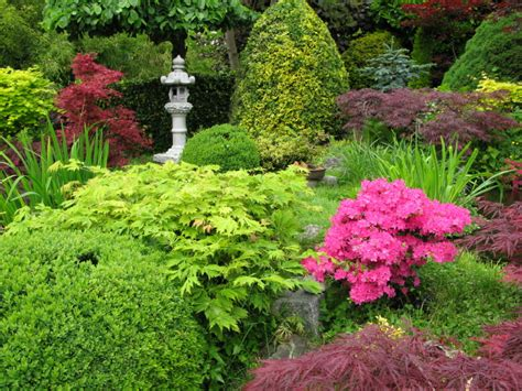 best soil for shrubs and trees soil3