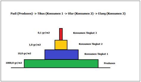 contoh biomassa pengertian ekologi dan contohnya memahami secara umum