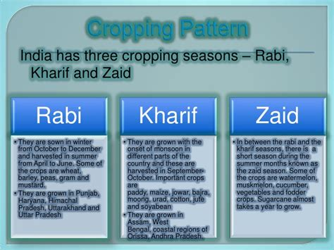 cropping pattern types agriculture