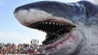 Megalodones y tiburones doovi
