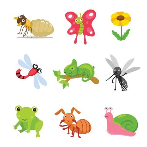 imagenes de insectos vectores coloured animals and insects collection vector free download